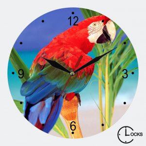 Ceas rotund din sticla papagal vorbitor